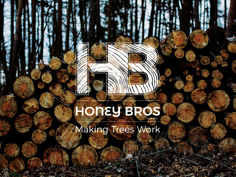Honey Bros