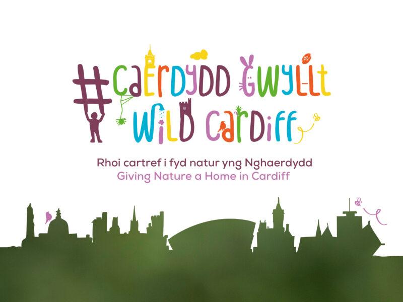RSPB Cymru Caerdydd Gwyllt
